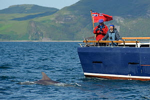 Passengers on the aft deck of Sea Life Surveys vessel Sula Beag watching a Bottlenose dolphin (Tursiops truncatus) in the Sound of Mull, Inner Hebrides, Scotland, UK, July 2011 - Chris Gomersall / 2020VISION
