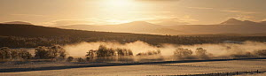 Panoramic view of mist over River Spey and Strathspey in winter, Cairngorms NP, Scotland, UK, December 2010  -  Mark Hamblin / 2020VISION
