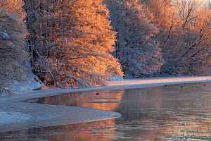 Partially frozen River Spey in winter, Cairngorms NP, Scotland, UK, December 2012 - Mark Hamblin / 2020VISION