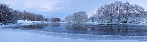 Panoramic of partially frozen River Spey with frosted trees at dusk in winter, Cairngorms NP, Scotland, UK, December 2012  -  Mark Hamblin / 2020VISION