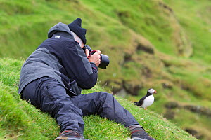 Tourist photographing a puffin (Fratercula arctica), Shetland Isles, Scotland, UK, July 2011 - Peter Cairns / 2020VISION