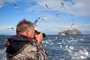Photographer taking pictures of a mixed flock of seabirds on boat trip to Bass Rock, Firth of Forth, North Berwick, Scotland, UK, July 2010. 2020VISION Book Plate. - Peter Cairns / 2020VISION