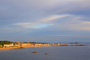 View over coastal town of North Berwick, Scotland, UK, August  -  Peter Cairns / 2020VISION