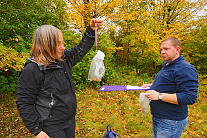 Hazel dormouse (Muscardinus avellanarius), Kent, UK. Members of Kent Mammal Group conduct monthly dormouse survey. Brett Lewis and Lesley Mason weigh a dormouse, October 2011, Model released.  -  Terry Whittaker / 2020VISION
