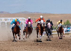 Indian jockeys mounted on thoroughbred horses rush out to win the All Indian Race, at the annual Indian Crow Fair, Crow Agency, near Billings, Montana, USA, August 2011  -  Kristel Richard