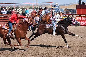 The first two Indian female jockeys mounted on thoroughbred horses to pass the finishing line at the All Indian Race, at the annual Indian Crow Fair, Crow Agency, near Billings, Montana, USA, August 2... - Kristel Richard