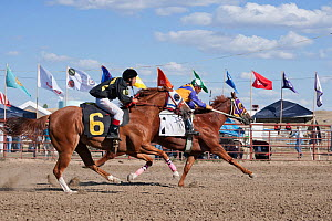 The first two Indian jockeys mounted on thoroughbred horses to pass the finishing line at the All Indian Race, at the annual Indian Crow Fair, Crow Agency, near Billings, Montana, USA, August 2011  -  Kristel Richard
