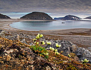 Landscape of Seven Islands and arctic coastline. Svalbard, Norway, May 2010. - Andy Rouse