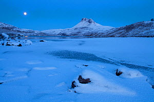 Stac Pollaidh at dawn, with frozen Loch Lurgainn in foreground, Coigach, Wester Ross, Scotland, UK, December 2010  -  Mark Hamblin / 2020VISION