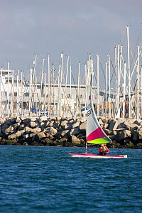 Dinghy under sail with Poole Harbour beyond, Dorset, England, October 2010.  -  David Woodfall