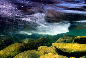Underwater view of River Glaslyn rapids, Snowdonia NP, Gwynedd, Wales, UK, April - Graham Eaton