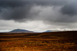 View towards Arenig Fach over open moorland, with stormy sky and dark clouds. Snowdonia NP, Gwynedd, Wales, UK, October  -  Graham Eaton