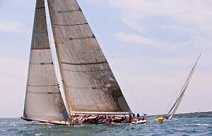'Velsheda' and 'Ranger' racing in the J-class Yacht Regatta, Newport, Rhode Island, USA, June 2011. All non-editorial uses must be cleared individually.  -  Onne van der Wal