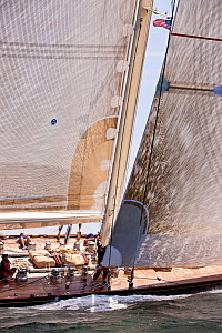 Sailwork on board 'Velsheda' during the J-class Yacht Regatta, Newport, Rhode Island, USA, June 2011. All non-editorial uses must be cleared individually.  -  Onne van der Wal