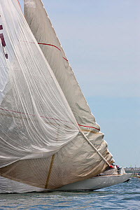 Hoisting spinnaker and lowering jib on board 'Ranger' during the J-class Yacht Regatta, Newport, Rhode Island, USA, June 2011. All non-editorial uses must be cleared individually.  -  Onne van der Wal
