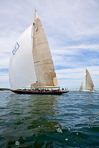 'Velsheda' competing in the J-class Yacht Regatta, Newport, Rhode Island, USA, June 2011. All non-editorial uses must be cleared individually.  -  Onne van der Wal