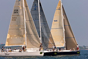 Startline during Block Island Race Week, Rhode Island, USA, June 2011. All non-editorial uses must be cleared individually.  -  Onne van der Wal