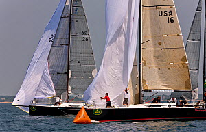Yachts lowering their spinnakers as they approach marker during Block Island Race Week, Rhode Island, USA, June 2011. All non-editorial uses must be cleared individually.  -  Onne van der Wal