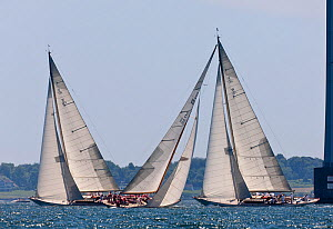Classic boats racing in the Tiedemann Regatta, Newport, Rhode Island, USA, July 2011. All non-editorial uses must be cleared individually.  -  Onne van der Wal