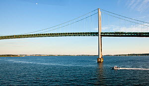 Hunt Yachts HBI (Hard Bottom Inflatable) beneath the Newport Bridge, Rhode Island, USA, July 2011. All non-editorial uses must be cleared individually.  -  Onne van der Wal