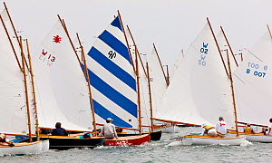 Boats racing in the Beetle Cat Championships, Weekapaug, Rhode Island, USA, August 2011. All non-editorial uses must be cleared individually.  -  Onne van der Wal