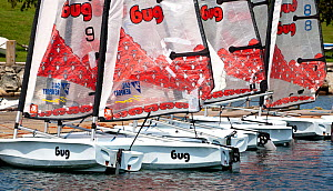 Fleet of Laser Bug dinghies tied up at the Public Sailing Centre, Newport, Rhode Island, USA, August 2011. All non-editorial uses must be cleared individually.  -  Onne van der Wal