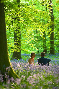 A couple relaxing amongst bluebells (Hyacinthoides non-scripta) in springtime woodland, Upper Soudley, Forest of Dean, Gloucestershire, May.  -  Nick Turner