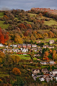 Housing and autumnal countryside, Stroud, Gloucestershire, UK, November 2008.  -  Nick Turner