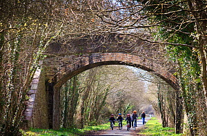 Group of cyclists on The Tarka Trail cycle path near bridge, Devon, UK, March 2010. - Nick Turner