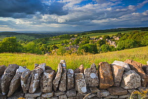 Dry stone wall and countryside, Snowshill, Cotswolds, UK, June 2011. - Nick Turner