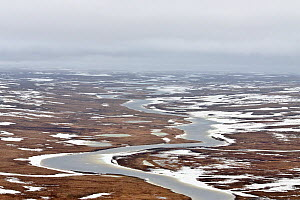 Aerial view of partially frozen tundra with ice river, Taimyr Peninsula, Siberia, Russia, June 2010 - Sergey Gorshkov