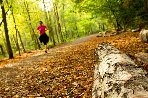 Woman jogging along a path though woodland, with log in the foreground, Beacon Hill Country Park, The National Forest, Leicestershire, UK, October 2011 - Ben Hall / 2020VISION