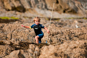 Young Boy climbing over rocks whilst rockpooling with nets, Falmouth, Cornwall, England, UK, July 2011 Model Released  -  Bertie Gregory / 2020VISION