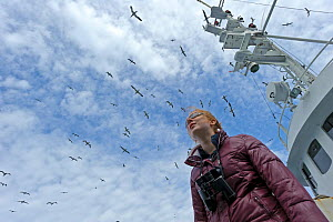 Young woman with binoculars round her neck watching a flock of Northern gannets (Morus bassanus) around the Island of Boreray, St. Kilda archipelago, Outer Hebrides, Scotland, UK, June 2011. Gannets p... - Chris Gomersall / 2020VISION