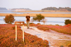Sign for a birdwatching hide, with a birdwatcher walking towards it in the background, Arne RSPB reserve, Dorset, England, UK, September. Model released.  -  Ross Hoddinott / 2020VISION