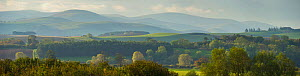 View from Coldstream over the River Tweed along Tweed Valley towards the north side of the Cheviot Hills, Berwickshire, Scotland, UK, October 2011  -  Rob Jordan / 2020VISION
