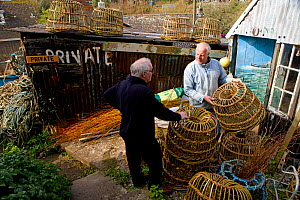 Nigel Legge (facing), a fisherman, artist and willow ('withy') lobster pot maker standing outside his workshop, Cornwall, England, UK, March 2011 Model released  -  Toby Roxburgh / 2020VISION