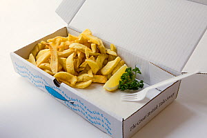 Fish and chips, in a take away box, with missing fish, England, UK, April 2011  -  Toby Roxburgh / 2020VISION