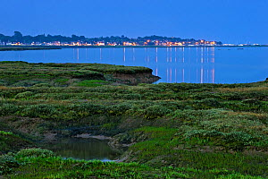 Saltmarsh at twilight, with lights of Bradwell-on-Sea in the background, Abbotts Hall Farm Nature Reserve, Essex, England, UK, July 2011  -  Terry Whittaker / 2020VISION