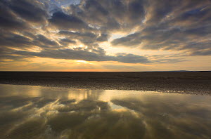 Sunset reflected in tidal inlet, Morecambe Bay, Lancashire, England, UK, February 2012 - Peter Cairns / 2020VISION