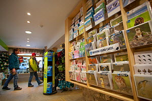 Shop at RSPB Leighton Moss visitor centre, showing economic benefits of wildlife tourism, Morecambe Bay, Cumbria, England, UK, February - Peter Cairns / 2020VISION