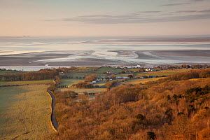 View from Arnside Knott over Morecambe Bay hinterland at dawn, Arnside, Cumbria, England, UK, February. 2020VISION Book Plate. - Peter Cairns / 2020VISION