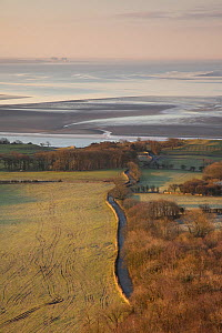 View from Arnside Knott over Morecambe Bay hinterland at dawn, Arnside, Cumbria, England, UK, February - Peter Cairns / 2020VISION