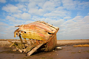 Wrecked fishing boat, Roa Island, Morecambe Bay, Cumbria, England, UK, February 2012 - Peter Cairns / 2020VISION