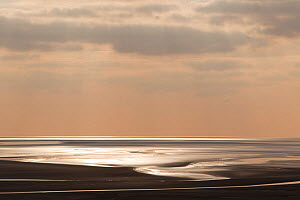 Sunlight reflecting on mudflats, Morecambe Bay, Lancashire, England, UK, February - Peter Cairns / 2020VISION