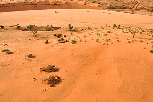 Huts of the Wadi tribe in arid landscape, seen from the air. Near Niamey, Sahelo-Sudanese Biome, W National Park (UNESCO, IUCN & RAMSAR), Niger. Aerial census, May 2011.  -  Thomas Rabeil