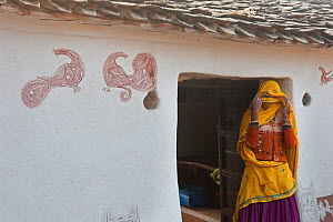 Village life, woman covering her face, in doorway to village home, with peacock art on walls, Sawai Modhopu, Rajasthan, India - Bernard Castelein