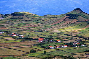 Coastal farmland near Rosais. Sao Jorge, Azores, September 2004. - Mike Read