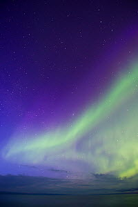 Aurora Borealis above the Arctic Ocean off the northen coast of Finnmark, Norway, April - Roy Mangersnes