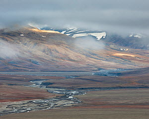 Delta running through autumn colours in Adventsdalen, Spitsbergen, Svalbard, Norway, August - Roy Mangersnes